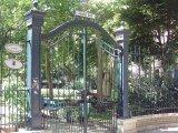 Budapest Károlyi garden